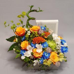 flori brasov cutie